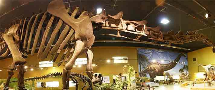 Museum-Dinosaurus-Terbaik-Di-Dunia-06