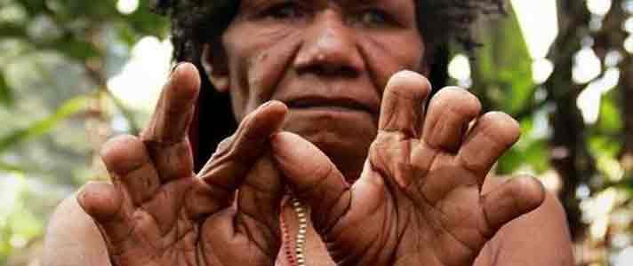 Budaya jari papua