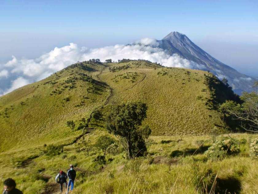 Padang-Savana-Terindah-Di-Indonesia-06