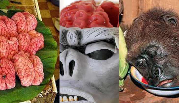 Makanan Terekstrim Di Dunia