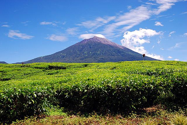 Gunung Tertinggi di Sumatera