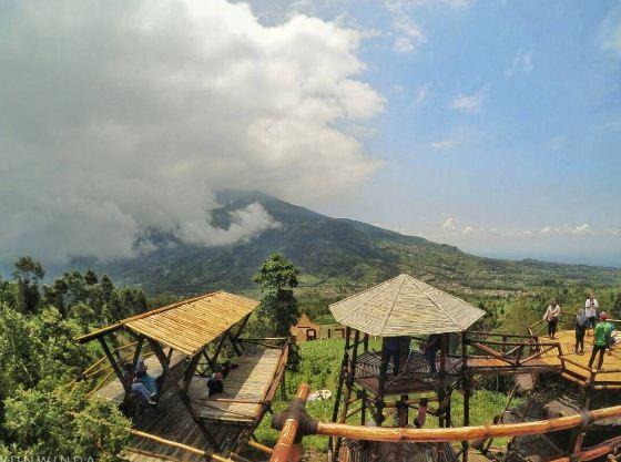 Temukan Petualangan Seru dan Menakjubkan di Kawasan Wisata New Selo
